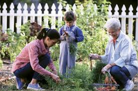 Family In The Garden Lawn And Garden With Some Preparation Success Can Be Found In
