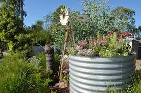 native plants brisbane the australian native garden brooke u0027s blooms