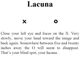 Blind Spot In Left Eye Eyeball Blind Spot Illusion Science Pinterest Word Search