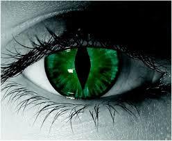 25 cat eye contacts ideas halloween eye
