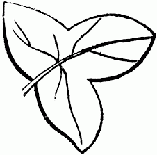 coloring page stunning easy leaves to draw 695854 coloring page