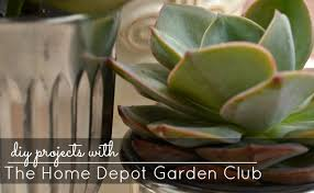 Home Depot Flower Projects - spring diy projects with the home depot garden club digin a