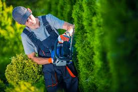 what do landscapers do professional landscapers in milwaukee wi will do a beautiful job