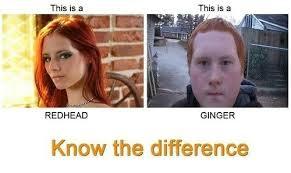 Redhead Meme - redhead vs ginger meme by soydolphin memedroid