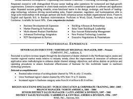 Examples Of Executive Resumes  executive summary resume examples