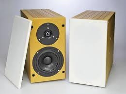 most beautiful speakers tang band d52 1 two way speaker kit audioxpress