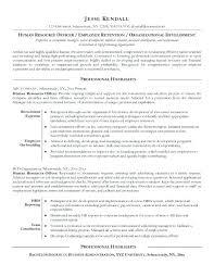 sample international resume entry level office clerk resume sample