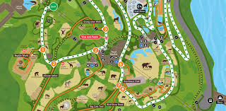 Sydney Map Map Thumbnail Taronga Taronga Zoo Map Sydney Zoo Map Australia