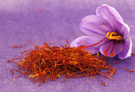 spices saffron is most expensive taking thyme to explore