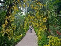World Botanical Gardens 13 Best Botanical Gardens In The World Triphobo