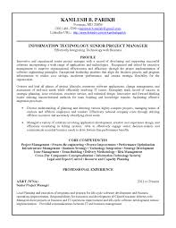 view resume examples federal government template