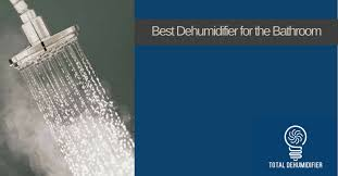 Bathroom Dehumidifier What Is The Best Bathroom Dehumidifier For 2017 Total Dehumidifiers