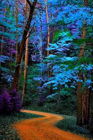 Tennessee national parks images A travel bucket list 15 places to color your world with infinite jpg