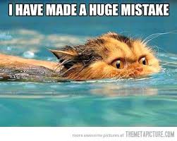 Funny Swimming Memes - funny swimming quotes short inspirational swimming quotes cool
