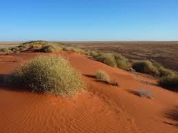 simpson desert wikipedia
