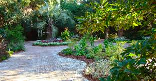 Georgia Botanical Garden by Tourist Destinations In Georgia U2013 Fantastic Beauty Of The City Of
