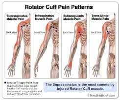 Rotator Cuff Injury From Bench Press Applications For Use As A Shoulder Ice Wrap Shoulder Heat Wrap
