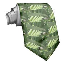 sukkot for sale pin sukkot palm fronds for sale on including ideal