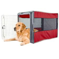 Igloo Dog House Amazon Com Large Pop Crate Red Dog House Dogs Cats Houses