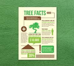 tree facts bb nutcha