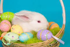 bunny basket eggs easter bunny basket eggs stock photos images pictures 7 514