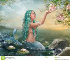 mermaid sunset green hair u0026 lilies royalty free stock