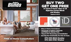 Special Blinds Steal Today U0027s Deal Free Coupon Special From Budget Blinds