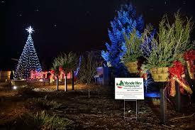 amazing christmas light decoration company home design new lovely