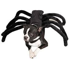 Large Dog Halloween Costume Ideas 25 Large Dog Costumes Ideas Caroler