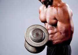 25 cara membentuk dan membesarkan otot lengan dalam 1 minggu