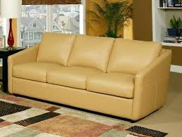 Leather Sofa And Dogs Durable Leather Sofa Pets 1025theparty