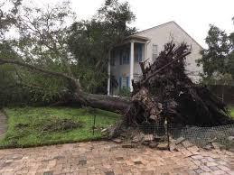 keystone home survives 60 foot oak tree barely