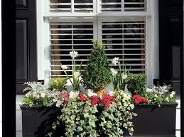 Flowers For Window Boxes Partial Shade - winter window box southern living