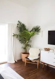 Living Room Corner Decor by Indoor Plants Home Decor Ideas Planters Hanging Plants Clean