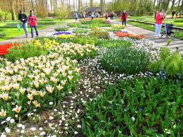 flower garden in amsterdam the magic of maastricht u0026 amsterdam in summer u2022 we blog the world