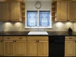 Kitchen Renovation Cost by Kitchen Remodel Stunning Average Kitchen Remodel Cost Kitchen