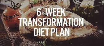 5 reasons why you can u0027t see your abs diet plan