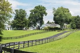 Johnny Depp Farm 41 Acres Located In Lexington Ky Offered For