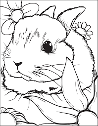 Bunny Rabbit Coloring Page 3 Bunny Rabbit Free Printable And Rabbit Colouring Page