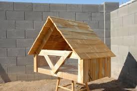 quail shelter backyard chickens