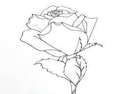smart class still life roses 101
