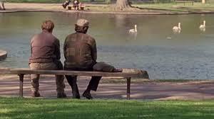 a wooden bench in boston public gardenn has spontaneously become a