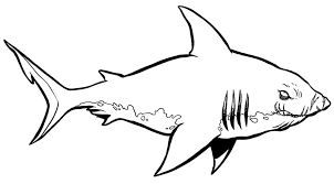 Printable Shark Coloring Pages Funycoloring Coloring Pages Sharks Printable