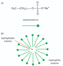 lab manual chemistry libretexts