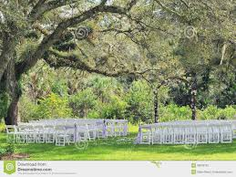 wedding venues in south florida outdoor wedding venue tree stock photo image 38030102