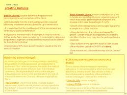what is typhoid how is it spread ppt