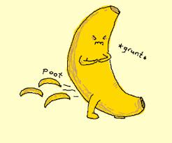 tiny banana bananas farts tiny bananas drawing by shominy