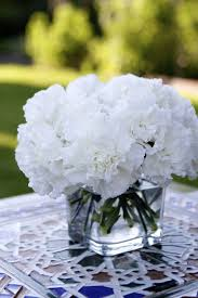 white carnations so beautiful so simple i u0027ll be adding these the