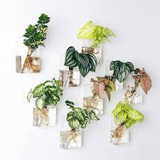 mkono 2 pcs wall mounted glass vase wall hanging planter plant