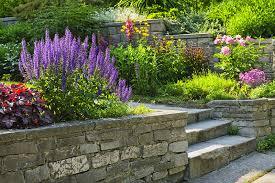bryn mawr and villanova landscaping showcase